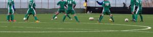 Løv-ham fotball